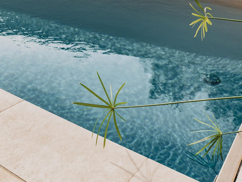 Réalisation Piscines & Concept - Piscine traditionnelle - limite propriété - Volet immergé